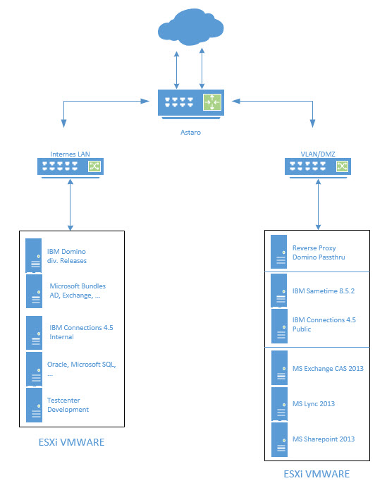 holistic-net-net